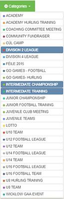 Calendar categories