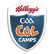 Cúl camp summer 2015